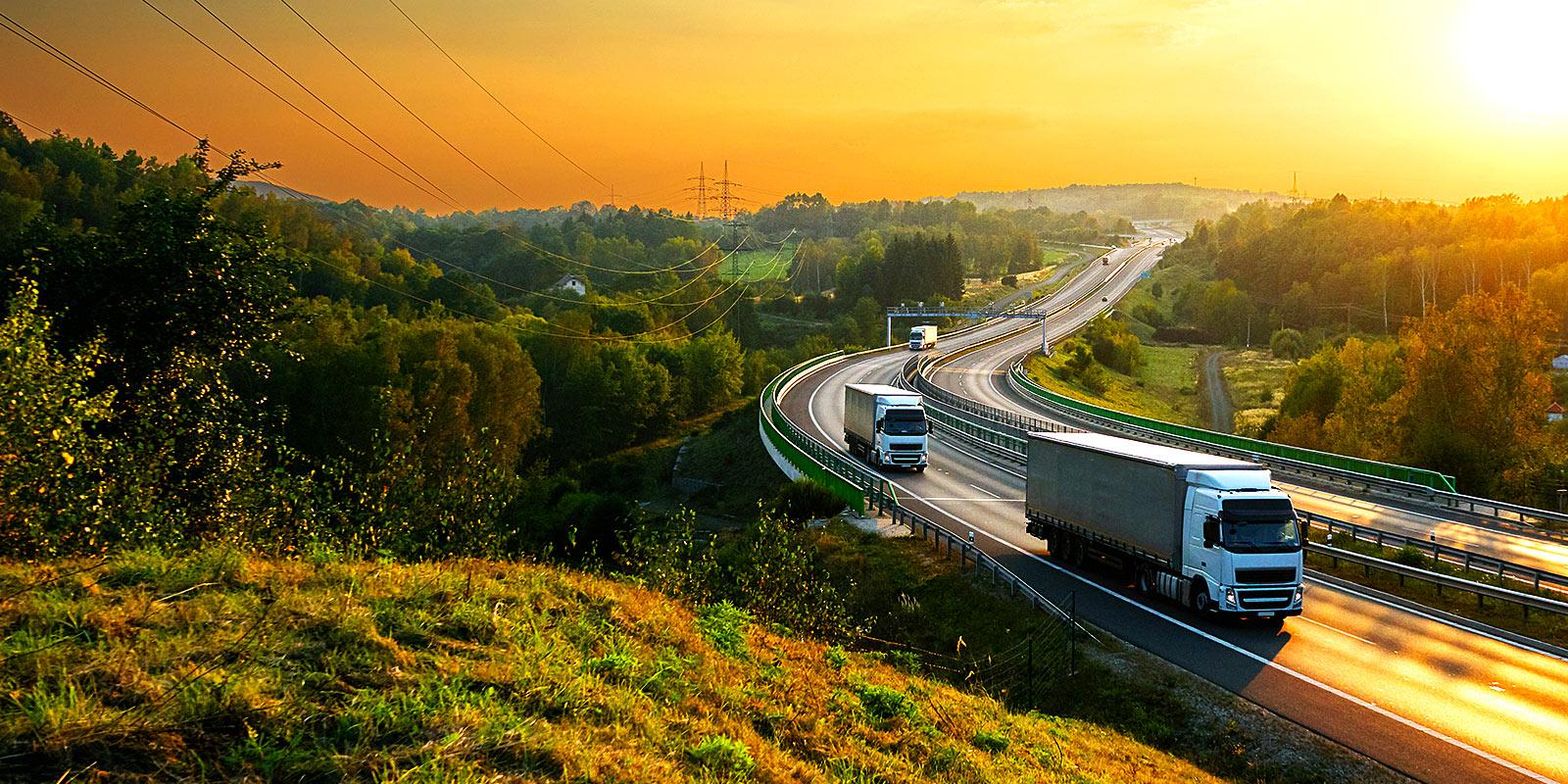 Autotrasporti Bedini – Servizio di trasporto a Sassuolo